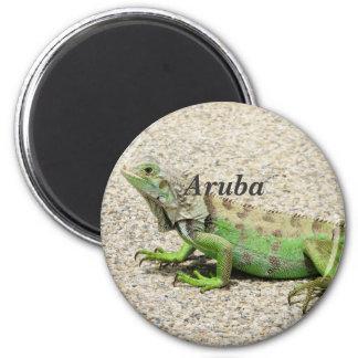 Aruba Green Iguana Magnet