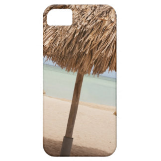 Aruba, palapa on beach iPhone 5 cover