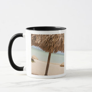 Aruba, palapa on beach mug