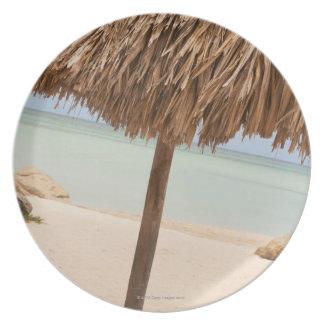 Aruba, palapa on beach plate