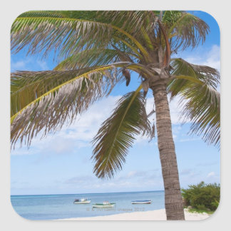 Aruba, palm tree on beach square sticker