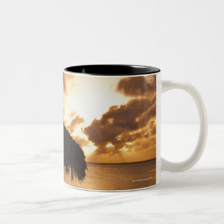 Aruba, silhouette of palapa on beach at sunset Two-Tone coffee mug