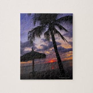 Aruba, silhouette of palm tree and palapa on jigsaw puzzle