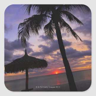 Aruba, silhouette of palm tree and palapa on square sticker