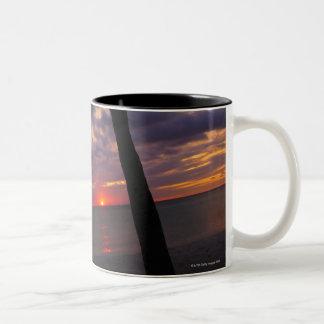Aruba, silhouette of palm tree and palapa on Two-Tone coffee mug