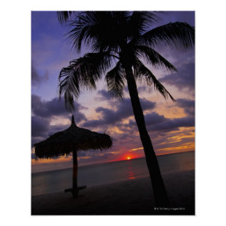 Aruba, silhouette of palm tree and palapa poster