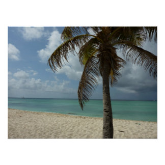 Aruban Beach I Beautiful Nature Scene Poster