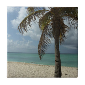 Aruban Beach I Beautiful Nature Scene Small Square Tile