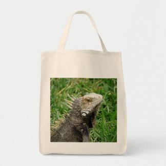 Aruban Lizard Canvas Bag