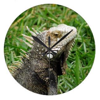 Aruban Lizard Clock
