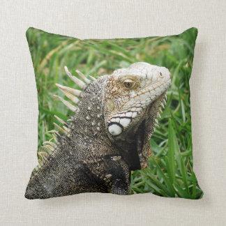 Aruban Lizard Throw Pillow