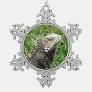 Aruban Lizard Ornament
