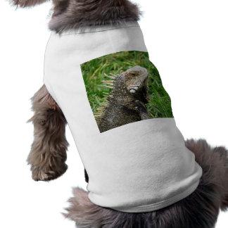 Aruban Lizard Dog Tee Shirt