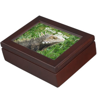 Aruban Lizard Keepsake Box
