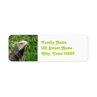 Aruban Lizard Return Address Label
