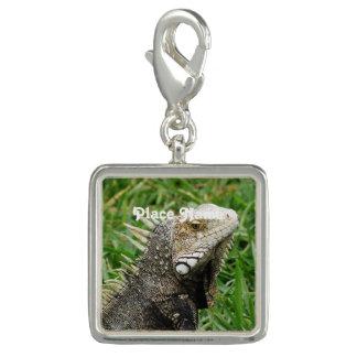 Aruban Lizard Bracelet