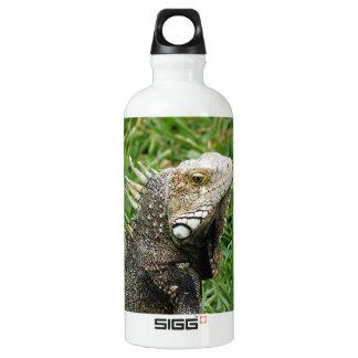 Aruban Lizard SIGG Traveller 0.6L Water Bottle