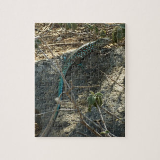 Aruban Whiptail Lizard Tropical Animal Photography Jigsaw Puzzle