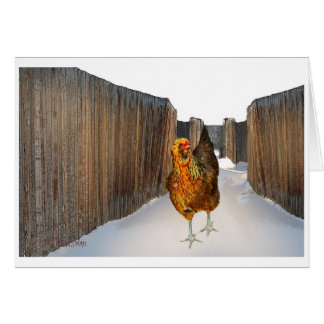 Arucana chicken in snow fence art Card