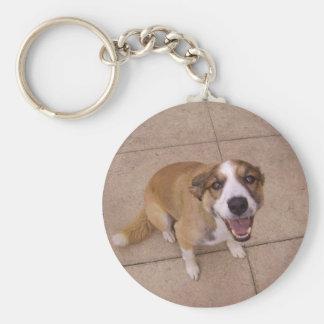 'Arwen' The Border Collie Key Ring