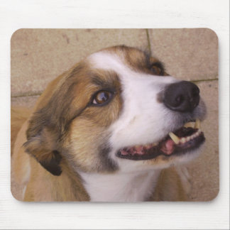 'Arwen' The Border Collie Mouse Pad