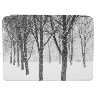as I side with trees iPad Air Cover