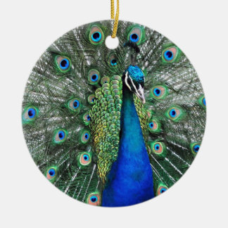 As Proud as a Peacock Christmas Ornament
