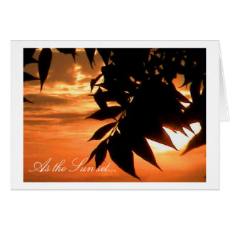 As the Sun set... Greeting Card