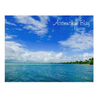 Ascension Bay Mexico Postcard
