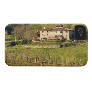 Aschuito, a working farm that accepts guests, iPhone 4 cover