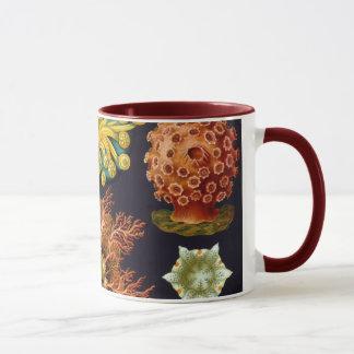 Ascidiae by Ernst Haeckel, Vintage Marine Animals Mug