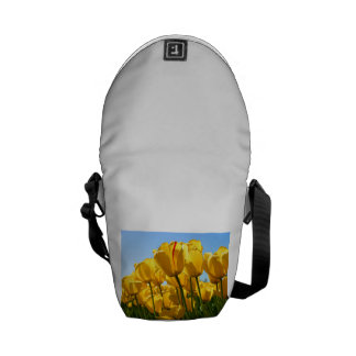 asdf courier bags
