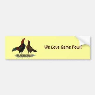 Aseel Black Red Chickens Car Bumper Sticker