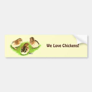 Aseel Black Red Chicks Bumper Sticker