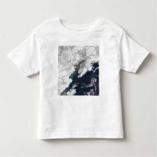 Ash plume from Mount Redoubt, Alaska Toddler T-Shirt