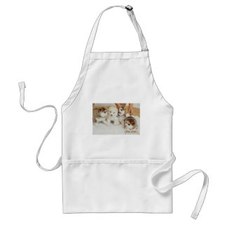 Ashley, Carrie, butterfly, and Fluffy Standard Apron