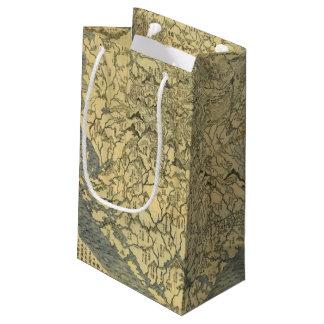 Asia 42 small gift bag
