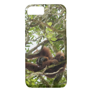 Asia, Borneo, Malaysia, Sarawak, Orangutan iPhone 8/7 Case