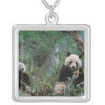 Asia, China, Chengdu. Giant Panda Sanctuary - 2 Square Pendant Necklace