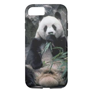 Asia, China, Chundu, Giant panda iPhone 8/7 Case