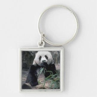 Asia, China, Chundu, Giant panda Key Chains