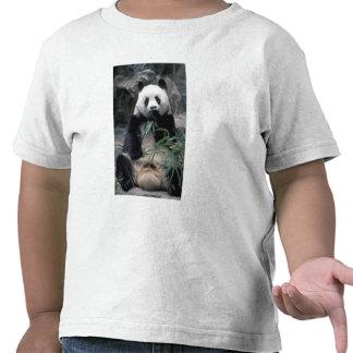 Asia, China, Chundu, Giant panda T Shirt