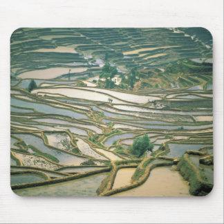 Asia, China. Flooded rice terraces near Nano Mouse Pad