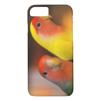 Asia, China, Hong Kong. Yuen Po Street bird iPhone 8/7 Case