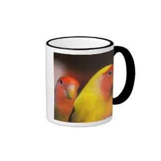 Asia, China, Hong Kong. Yuen Po Street bird Ringer Coffee Mug