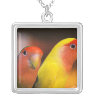 Asia, China, Hong Kong. Yuen Po Street bird Silver Plated Necklace