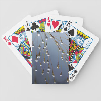 Asia, China | Huansan, Dewdrops Bicycle Playing Cards