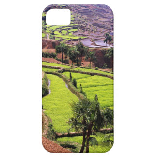 Asia, China, Yunnan, Honghe.  Rice terraces near 2 iPhone 5 Cover