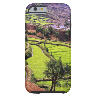 Asia, China, Yunnan, Honghe.  Rice terraces near 2 Tough iPhone 6 Case