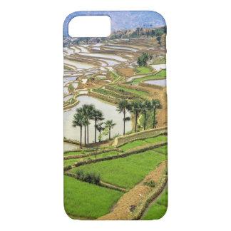 Asia, China, Yunnan, Honghe.  Rice terraces near iPhone 7 Case